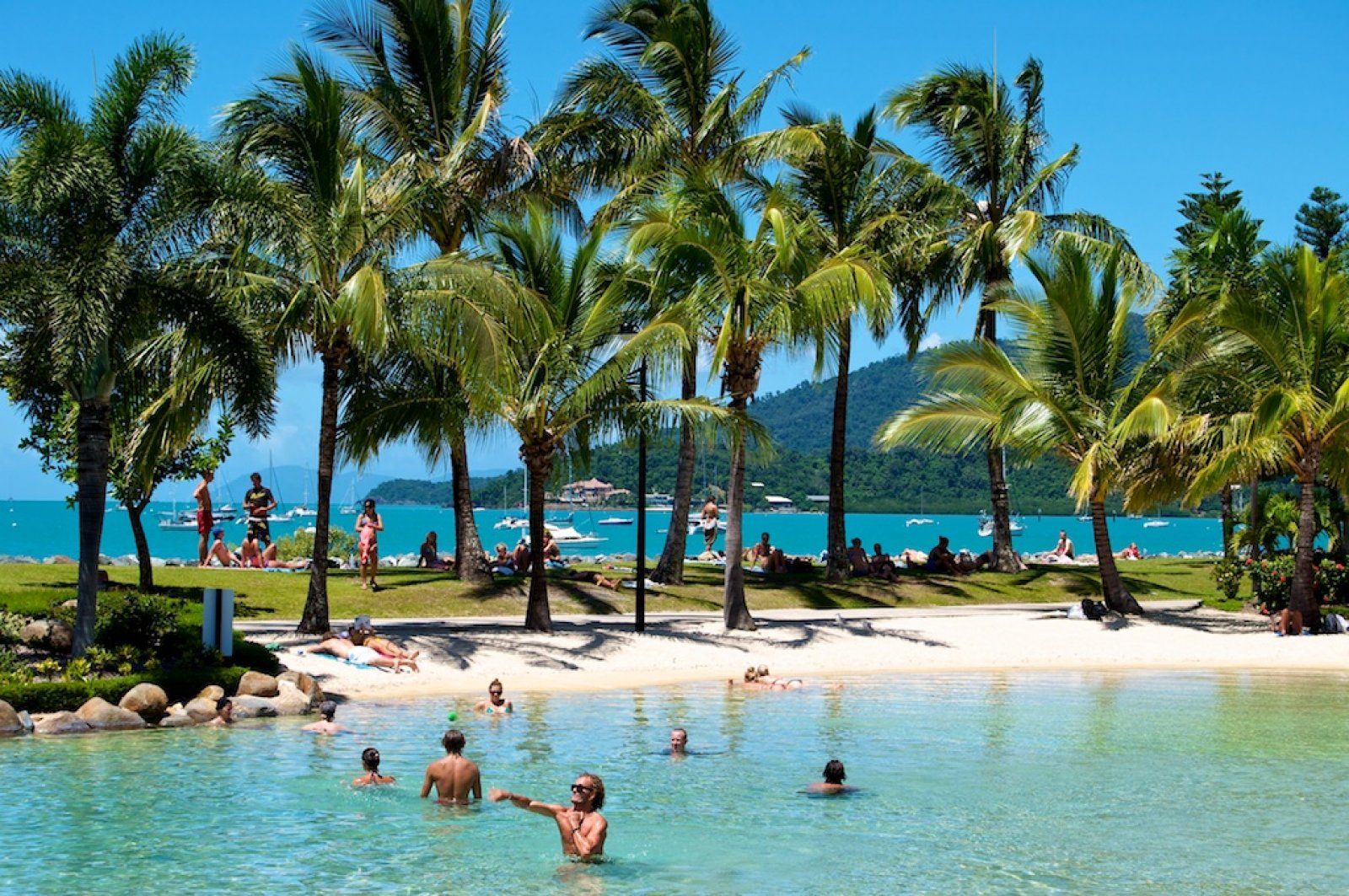 Airlie Beach Our Area Ray White Whitsunday