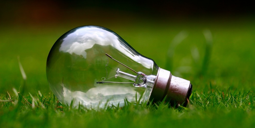 3 unusual ways to keep it green while redecorating your real estate