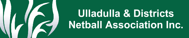 Netball Banner 4