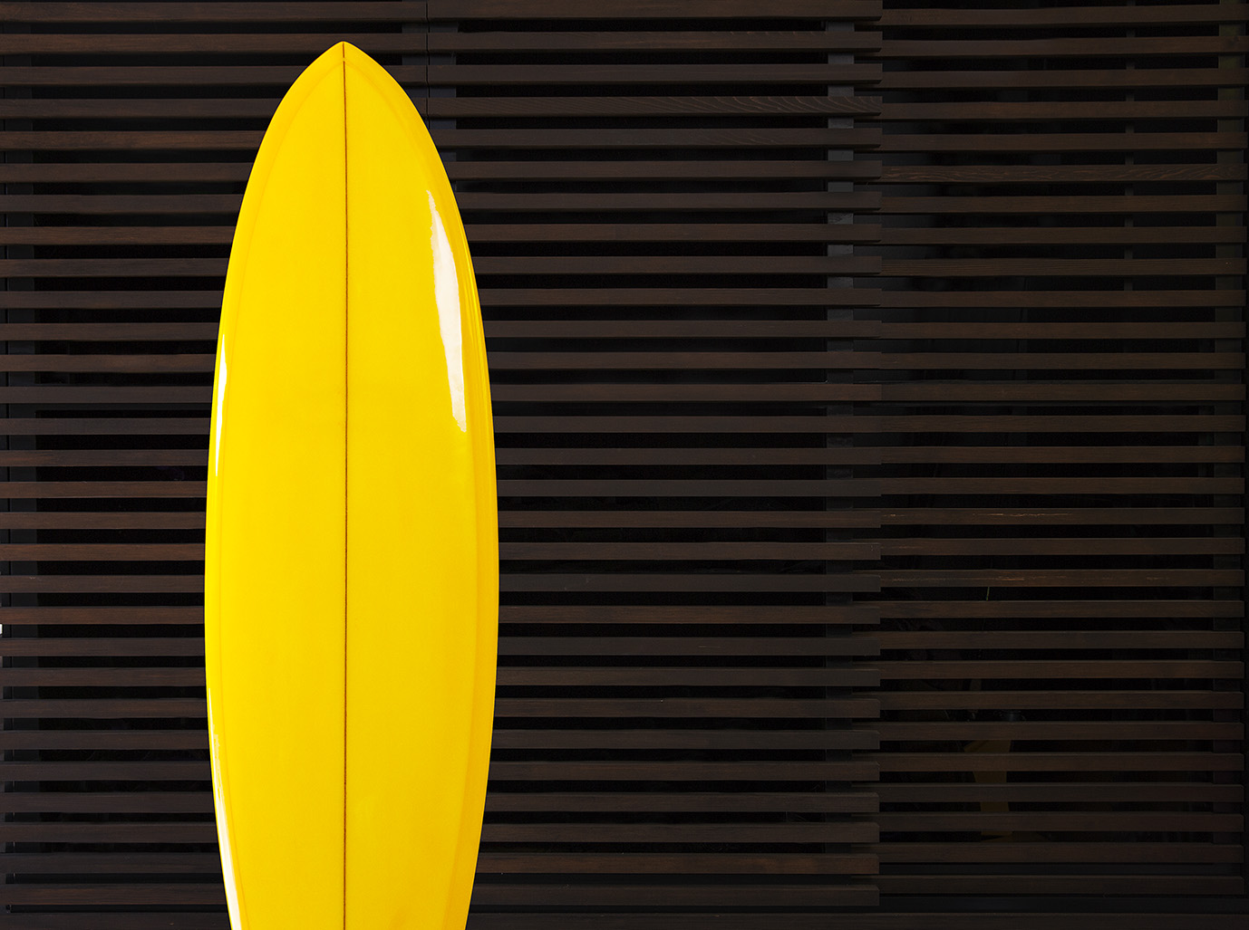 Surfboard image - Ray White_Know How - Landscape - Low res