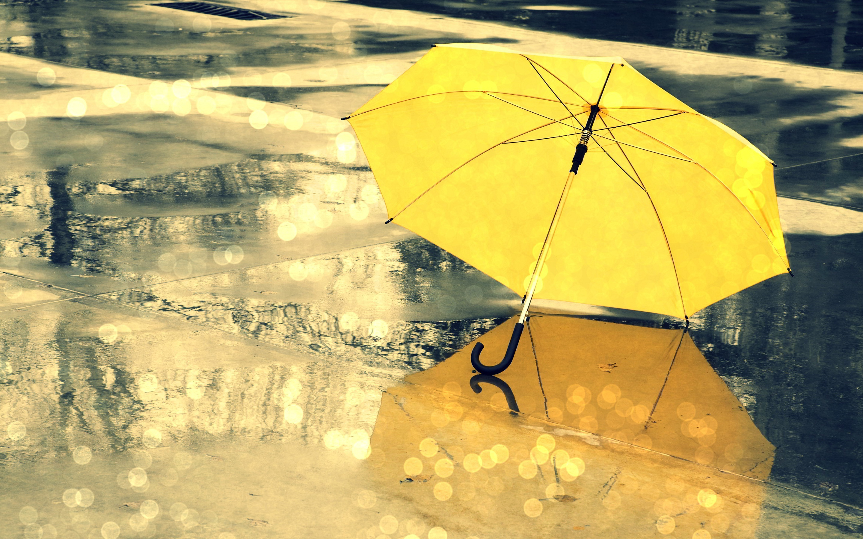 7014462-yellow-umbrella-rain