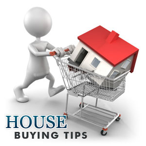 Tips_for_buying_property