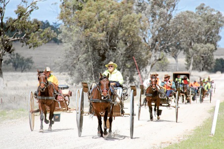 Quirindi in September - Spring Show and What's On!
