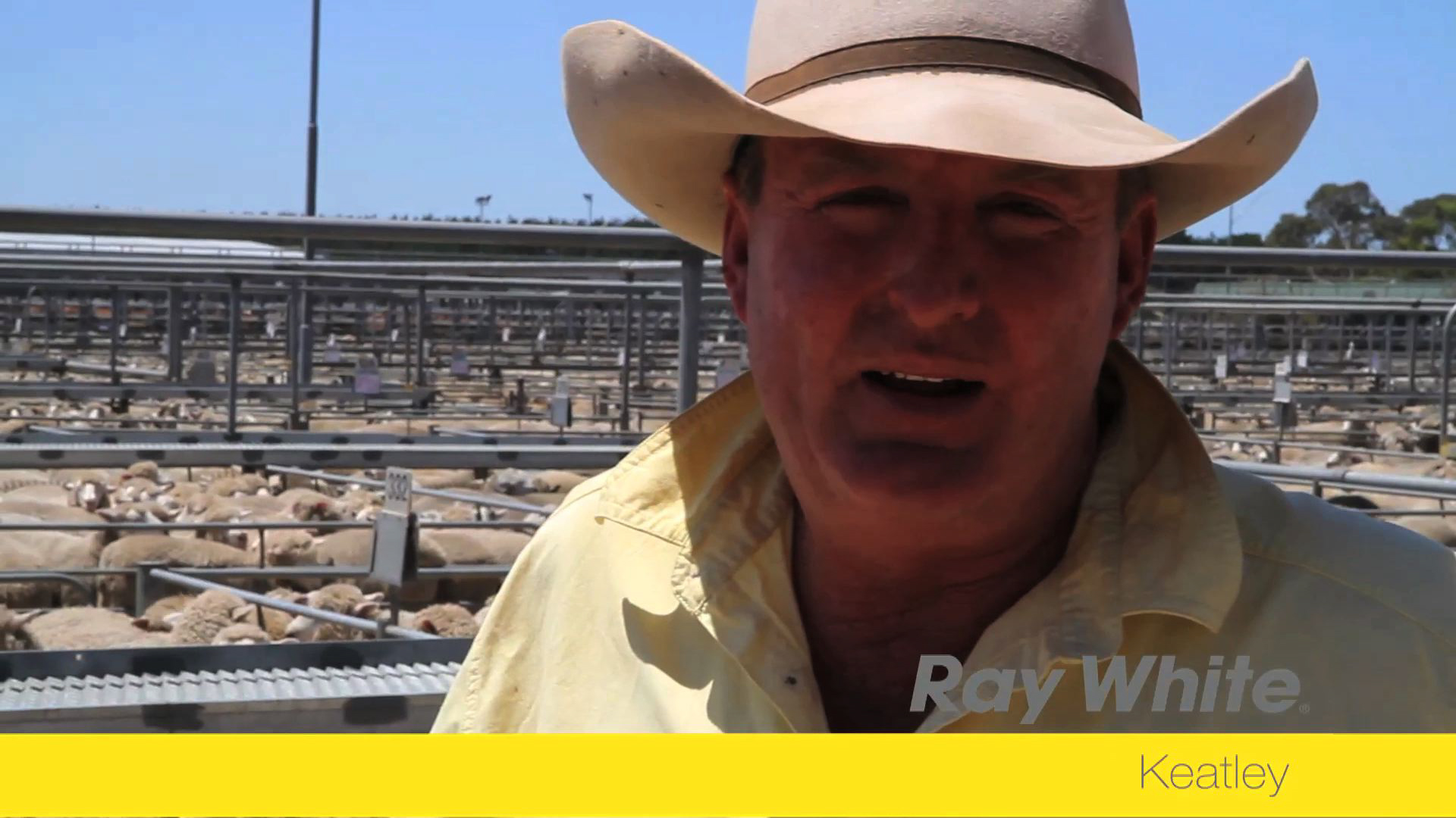 Meet Dale Keatley - Ray White Keatley Principal