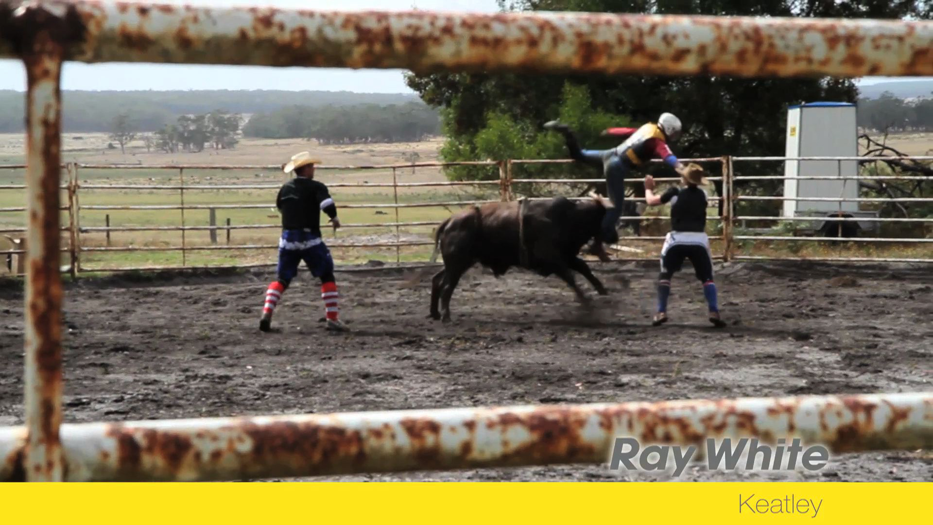 Woodalls Rodeo Promotions Bucking Bull Sale