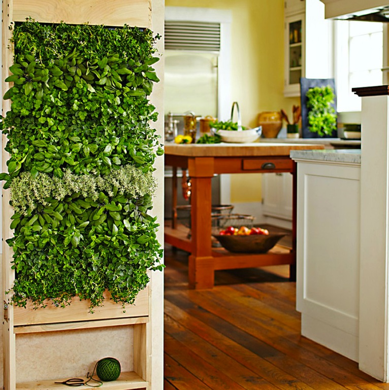 Interior-miniature-vertical-kitchen-garden