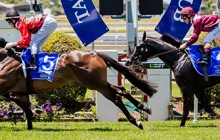 Tattersall-Club-Tiara-Race-Day-page-banner-250616