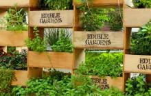 edible-garden-002