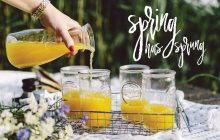 cropped_Spring has sprung - Copy