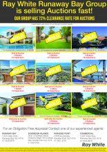 Auction Promo - 16.08.16