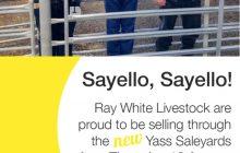 Sayello