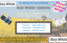Spring Photo Comp 2nd Draft