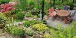 terrace-435083_1280-990x500